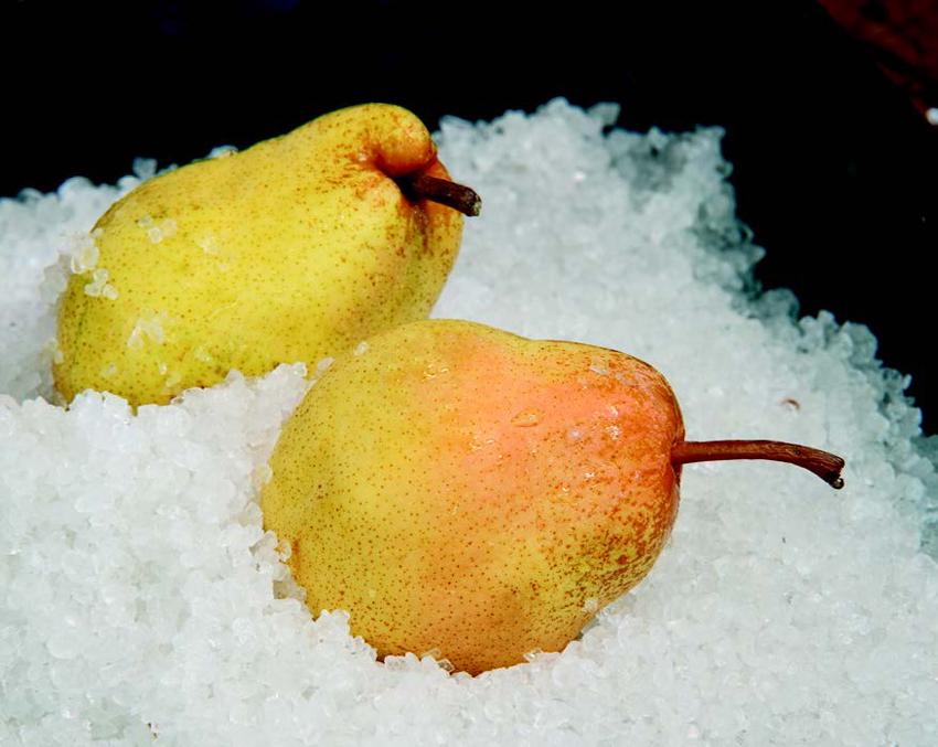 entenbrust-birnen-salzkruste-kartoffeln-arzak2