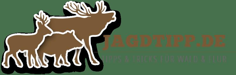 jagdtipp_banner