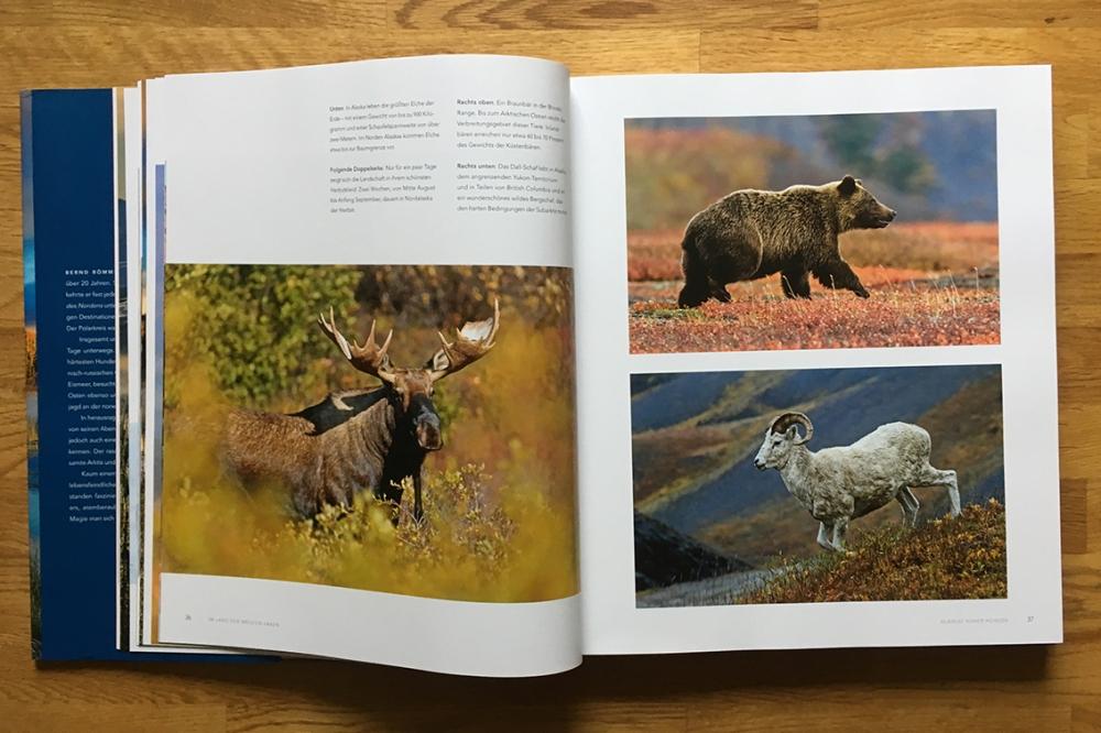 Serengeti des Nordens_2095