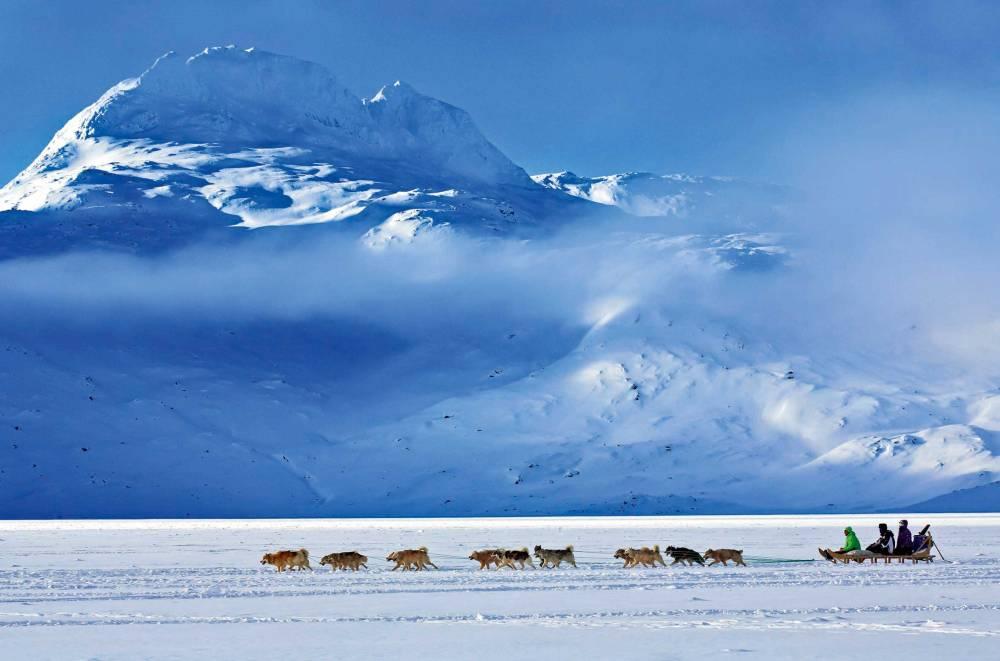 Schlittenhunde Ostgrönland