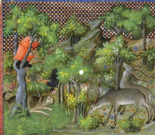 Jagd Mittelalter Baum