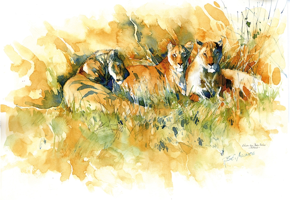 Löwen im Selous