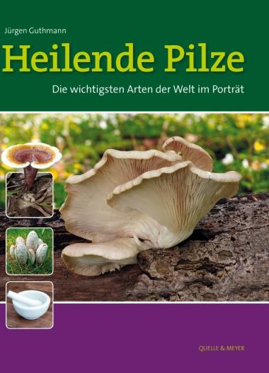 Guthmann, Heilende Pilze