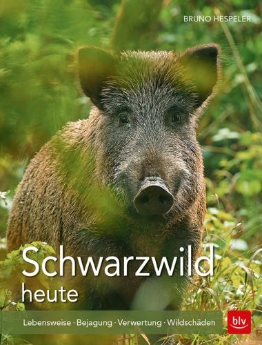 1802_Schwarzwild_191017.indd