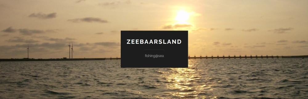 zebaarsland-1