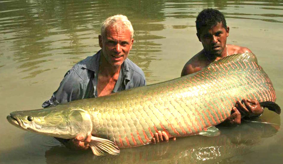 river-monsters