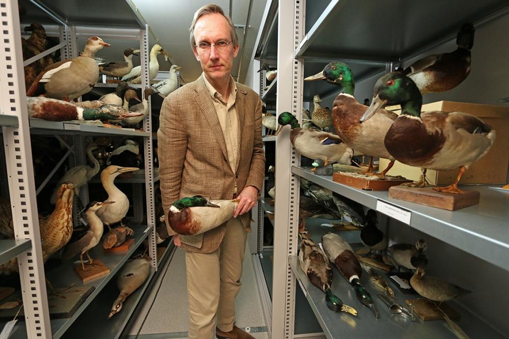 Der Entenmann_Kees Moeliker_Edel Books_Pressebild_© Naturhistorisches Museum Rotterdam